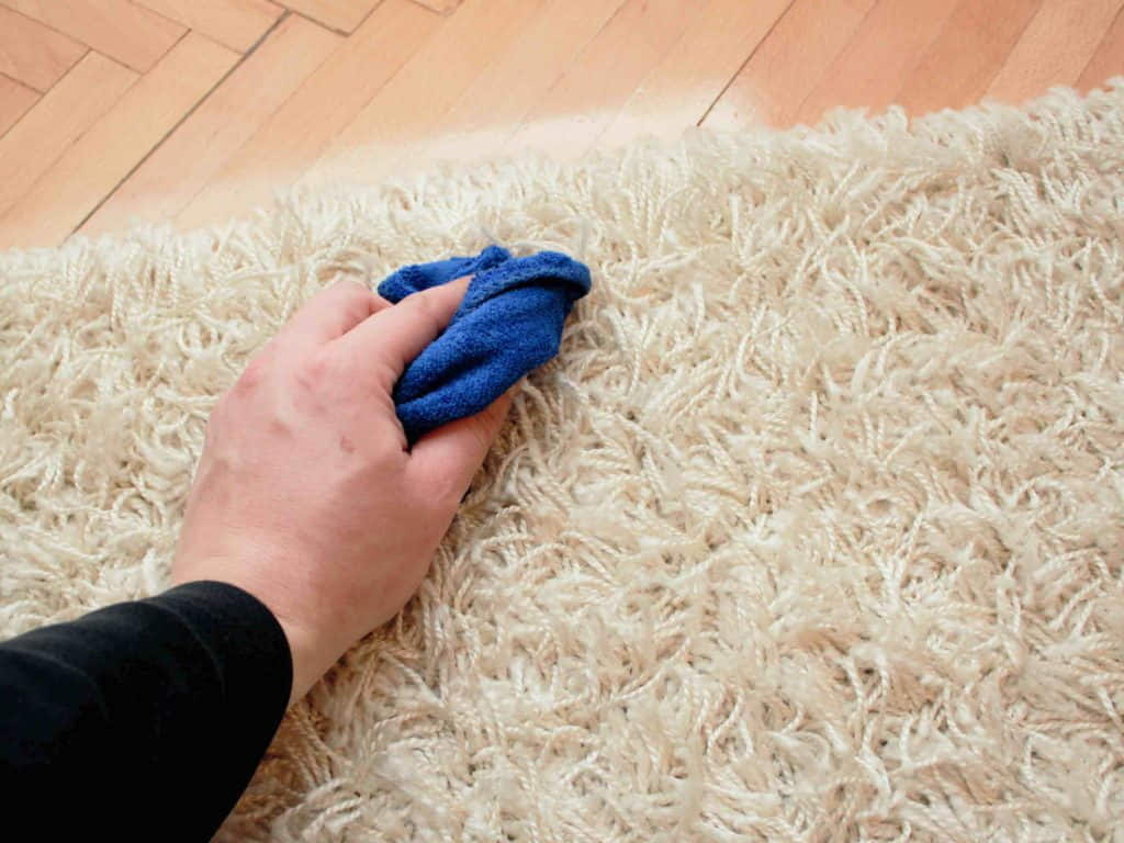10 Ways To Keep Your Shag Rugs Looking New