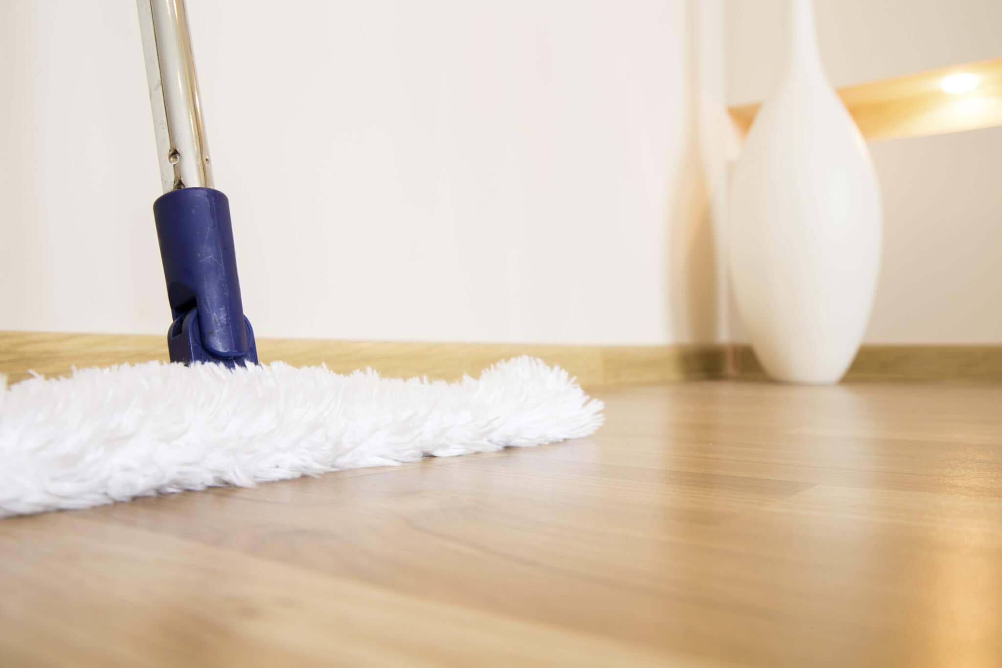 Choose the Products Carefully for the Cleaning of Your Floor